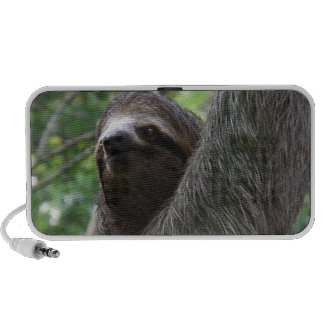 Two Toed Sloth Speakers