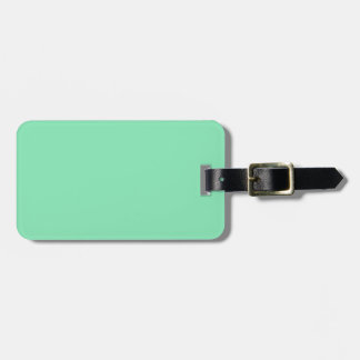 Two-Tone Brown & Mint Green Luggage Tag