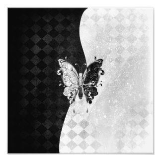 Two Tone Butterfly Photographic Print