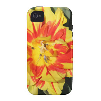 two tone flowers vibe iPhone 4 cases