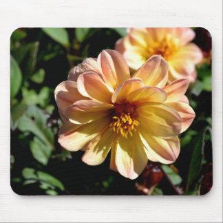 Two Tone Peach Dahlia Flower Mouse Pad