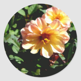 Two Tone Peach Dahlia-PhotoMagic Classic Round Sticker