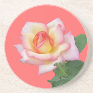 Two-tone Pink Rose Drink Coaster