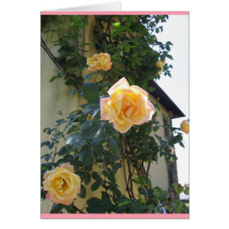Two-tone roses card