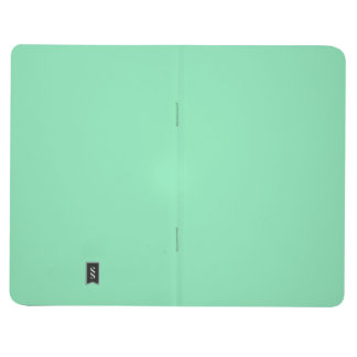 Two-Toned Black and Mint green Pocket Journal