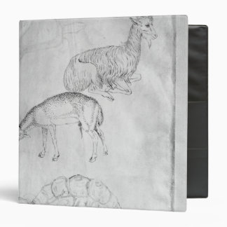 Two tortoises, goat and sheep 3 ring binder