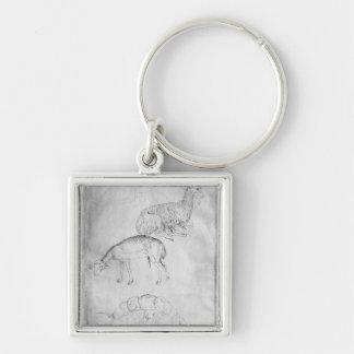Two tortoises, goat and sheep keychain