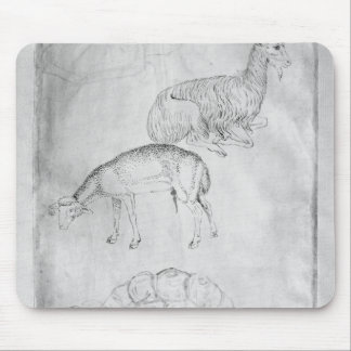 Two tortoises, goat and sheep mouse pad