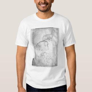 Two tortoises, goat and sheep T-Shirt
