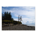 Two Tree Point 5x7 Paper Invitation Card