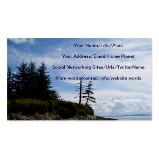Two Tree Point Business Card
