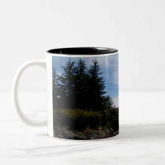 Two Tree Point Mug