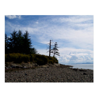 Two Tree Point Postcard