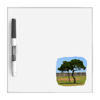 Two trees and castle walls Dry-Erase whiteboard