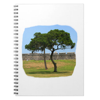 Two trees and castle walls journal