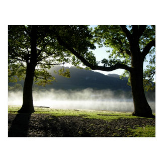 Two Trees Entwined at Derwentwater Post Card