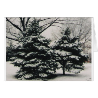Two Trees in Winter (blank greeting card) Card