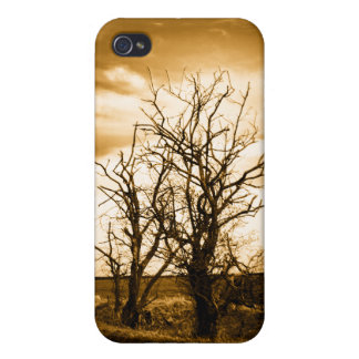 Two Trees Sepia Fields iPhone 4 4s Speck case iPhone 4/4S Case
