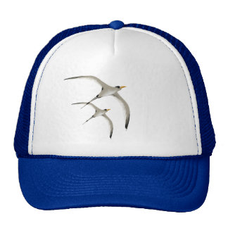 Two Tropic Birds Hat