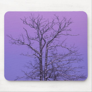 Two Trunked Tree at Sunrise; Chippewa County, Mouse Pad