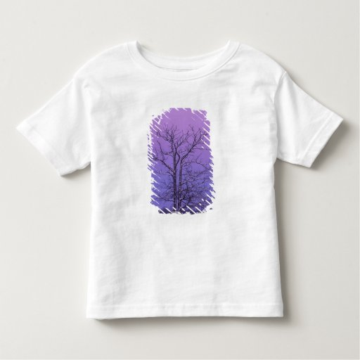 Two Trunked Tree at Sunrise; Chippewa County, Toddler T-shirt