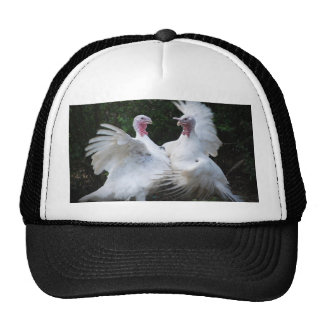 Two Turkey's Duking It Out Men's Hat