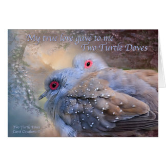 Two Turtle Doves Holiday Card