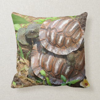 Two Turtle Love Pillow