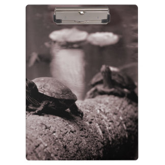 two turtles on palm trunk sepia clipboard