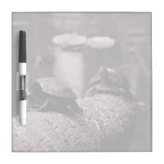 two turtles on palm trunk sepia Dry-Erase board