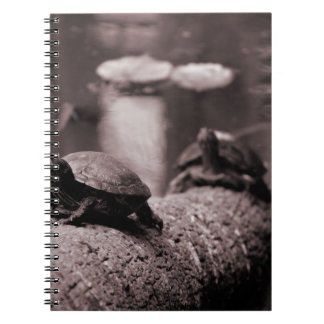 two turtles on palm trunk sepia notebook