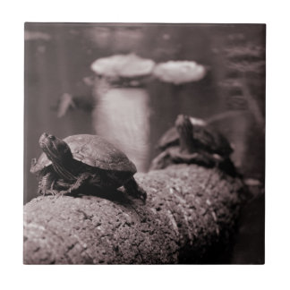 two turtles on palm trunk sepia small square tile