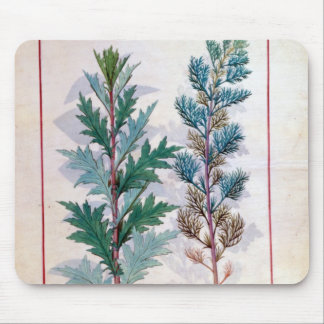 Two varieties of Artemesia Mouse Pad
