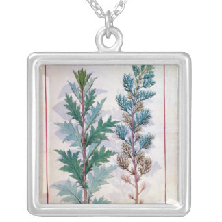 Two varieties of Artemesia Necklace