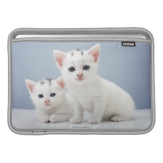 Two very young white kittens stare inquisitively sleeve for MacBook air