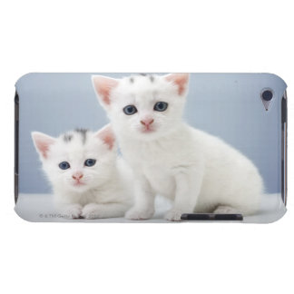 Two very young white kittens stare inquisitively iPod touch cases