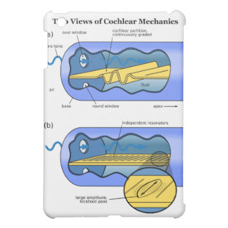 Two Views of Cochlea Mechanics Inner Ear Cover For The iPad Mini