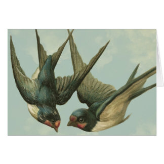 Two Vintage Swallows Card