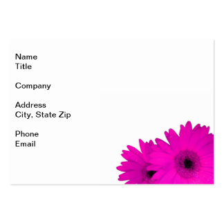 Two Vivid Fuchsia Gerbera Daisies Large Business Cards (Pack Of 100)
