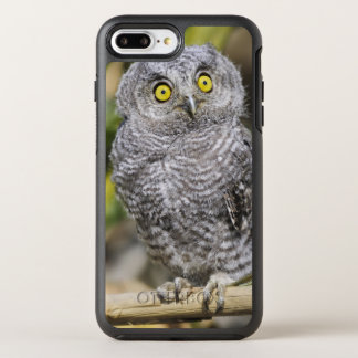 Two-Week Old Baby Screetch-Owl OtterBox Symmetry iPhone 7 Plus Case