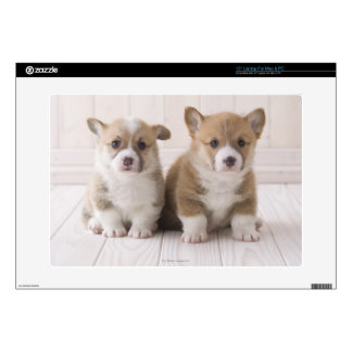 "Two Welsh Corgi Sitting Decal For 15"" Laptop"