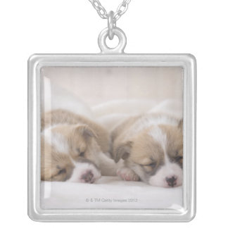 Two Welsh Corgi Sleeping Silver Plated Necklace