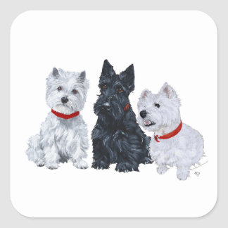 Two Westies and a Scottie Square Sticker