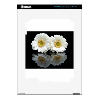 Two white gerberas with mirror image on black decals for iPad 3
