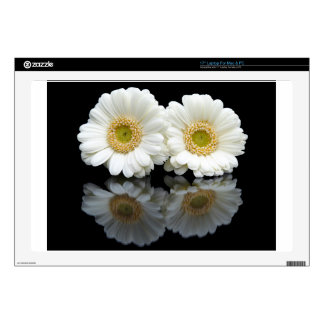 Two white gerberas with mirror image on black laptop decal