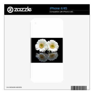 Two white gerberas with mirror image on black skin for the iPhone 4