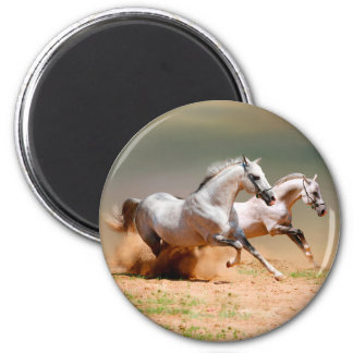 two white horses running 2 inch round magnet