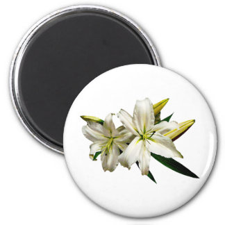 Two White Lilies and Buds Magnets