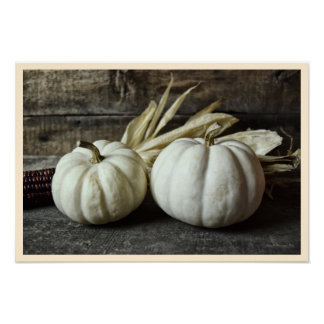 Two White Pumpkins With Corn Poster