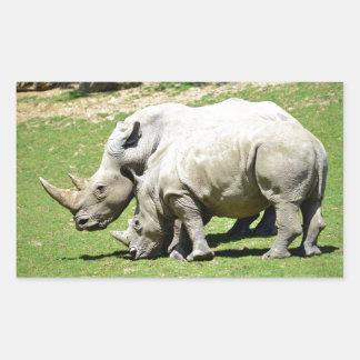 Two white rhinoceros in grass rectangular sticker